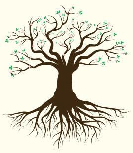 Posadi drevo